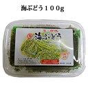 海ぶどう(100g) 海ぶどうのたれ10g×2袋入り!【よしもと沖縄シュフラン認定商品】