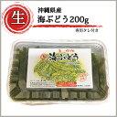 海ぶどう(200g) 海ぶどうのたれ10g×3袋入り!