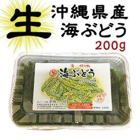 【生】海ぶどう200gお取り寄せ グルメ おつまみ 沖縄 お土産