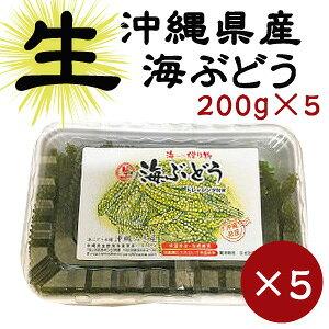 【生】海ぶどう200g×5パックセットお取り寄せ グルメ おつまみ 沖縄 お土産
