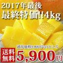 (最終販売)ワケありマンゴー【ご自宅専用】【送料無料】4kg(10玉前後)