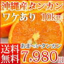 数量限定沖縄産訳ありタンカン10kg【お届け日指定不可】