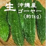 【ひろし屋】島豆腐半丁(500g)【冷蔵便】