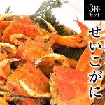 【早期予約】せいこがに福井県産せいこ蟹(セイコガニ)3杯[冷蔵]【10月末まで限定予約特典】カニかに越前ガニかにみそせこ蟹セコガニこっぺがにコッペガニお歳暮せいこがにせこがに