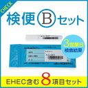 EHEC含む8項目セット。赤痢・サルモネラ・チフス・パラチフスA・腸管出血性大腸菌O157・O26・O111・O128。早い結果・一人からでも検査可能・保健所に...
