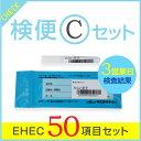EHEC50項目セット・赤痢・サルモネラ・チフス・パラチフスA・腸管出血性大腸菌50種(O157を含む)・早い結果・一人からでも検査可能・保健所に届ける際も有効
