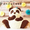 【40代女性】みんなが驚くケーキを手土産に!サプライズ感満載の立体ケーキのおすすめは?