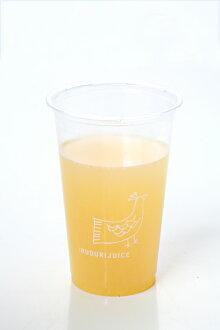 레몬 생강 주스 5 개