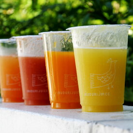 【送料無料】選べるジュース20本セット野菜まるごと 無添加 砂糖不使用 野菜ジュース(グリーンスムージー)レモネード(レモンジンジャー)ありますグリーン スムージー ダイエット ドリンク ジュースクレンズ クレンズダイエット