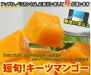 沖縄のキーツマンゴー!ダンボール箱に3キロ詰めます!詰めます!(2〜5玉になると思います。)激安のためノークレームノーリターン!