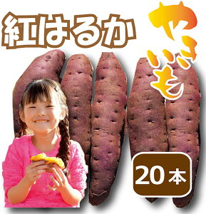 焼き芋 紅はるか 20本入り ねっとり食感 熟成 11月収穫 低温完熟 2時間以上かけて焼いた甘い焼き芋 ギフト対応 ふるさと便でも人気 限定29セット 桃太郎の 岡山 約 2kg以上 スイーツ お取り寄