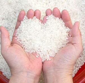 【新米 送料無料】ミルキープリンセス100%のお米 玄米 5kg 岡山県真庭市 名水百選の地 ひるぜん農園 直売 通販 蒜山の米