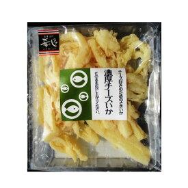 おさかなバル 濃厚チーズいか 60g(メール便の場合4個まで)[TY-J-K][T8]