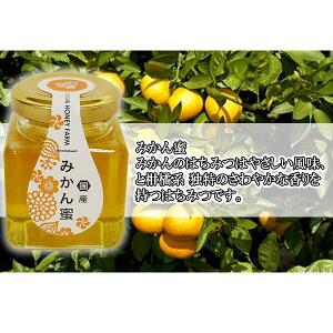 山田はちみつ 国産みかん蜜 100g【ハチミツ/蜂蜜/はち蜜/通販】[TY-J-K][T8]