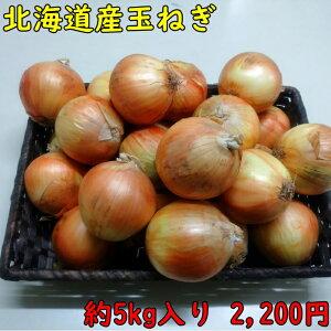 北海道産玉ねぎ たまねぎLサイズ タマネギ約5kg入り 送料無料 国産