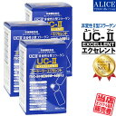 非変性活性2型コラーゲン『 UC-IIエクセレント(60粒) 3箱セット 』 { UC−2 UC2 UC・2 UC・II UC-2 UC−〓 UC〓 MC2 M…