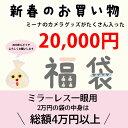 ミラーレス用 福袋 20000円【送料無料】