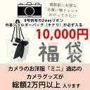 ★リボン巾着ショルダーバッグ【キナリ】が必ず入るハッピー福袋 10000円【ミニ】