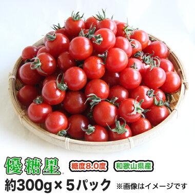 【送料無料】【ミニトマト】【高糖度】【甘い】優糖星(ゆうとうせい)約300g×5パック入りフルーツ感覚!【まとめ買い割引あり】【フルーツトマト】