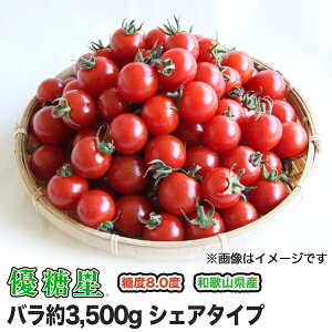 【送料無料】【ミニトマト】【高糖度】【甘い】優糖星(ゆうとうせい) バラ 約3,500gシェアタイプ!
