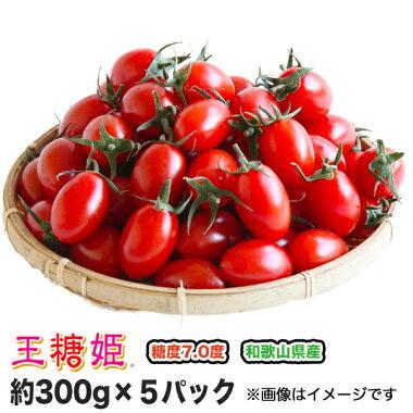 【送料無料】【ミニトマト】【高糖度】【甘い】王糖姫(おとひめ)約300g×5パック入り【まとめ買い割引あり】【フルーツトマト】