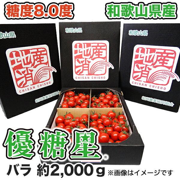 【送料無料】【ミニトマト】優糖星(ゆうとうせい) バラ 約2,000gフルーツ感覚!