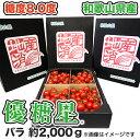 【送料無料】【ミニトマト】 優糖星(ゆうとうせい) バラ 約2,000g フルーツ感覚!