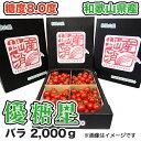 【ミニトマト】 優糖星(ゆうとうせい) バラ2,000g フルーツ感覚!