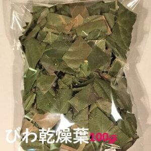 【送料無料】乾燥葉(びわ)100グラム びわ 葉 びわの葉 茶 枇杷 の葉 ビワ の葉 びわ葉 ビワ葉 枇杷葉 ドライリーフ びわ茶 ビワ茶 枇杷茶 びわちゃ びわエキス びわの葉エキス ビワの葉エキ