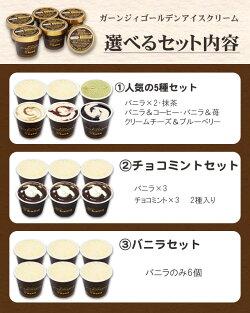 アイスの種類1