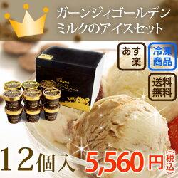 アイスクリーム12個入り