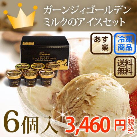 味が選べる!6個入り[南ヶ丘牧場のアイスクリーム](アイス6)送料込