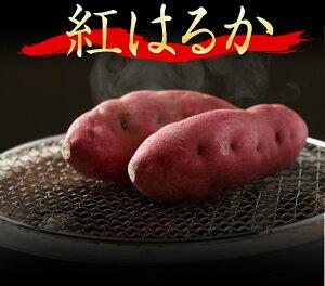 2か月以上熟成 紅はるか 5kg 鹿児島県産【熟成】【貯蔵芋】