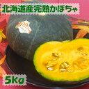 大人気★北海道産ほくほくかぼちゃ 5kg(2玉〜4玉) ★ 【 送料無料 】