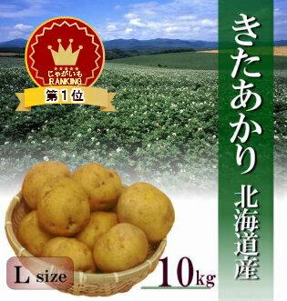 【新じゃが】北海道産「きたあかり」Lサイズ 10kg 早い者勝ちです!【送料無料】