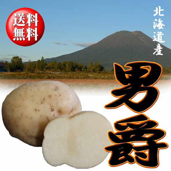 北海道産 じゃがいも「だんしゃく」 Lサイズ 10kg【送料無料】