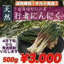 【送料無料】天然行者にんにく(キトビロ)500g【北海道産】