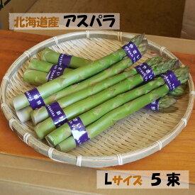 【送料無料】アスパラガス 北海道産 750g Lサイズ グリーンアスパラガス アスパラ