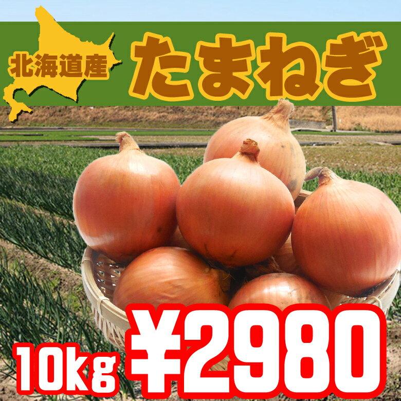 【送料無料】北海道北見産美味しい玉ねぎ10kg【おすすめ】