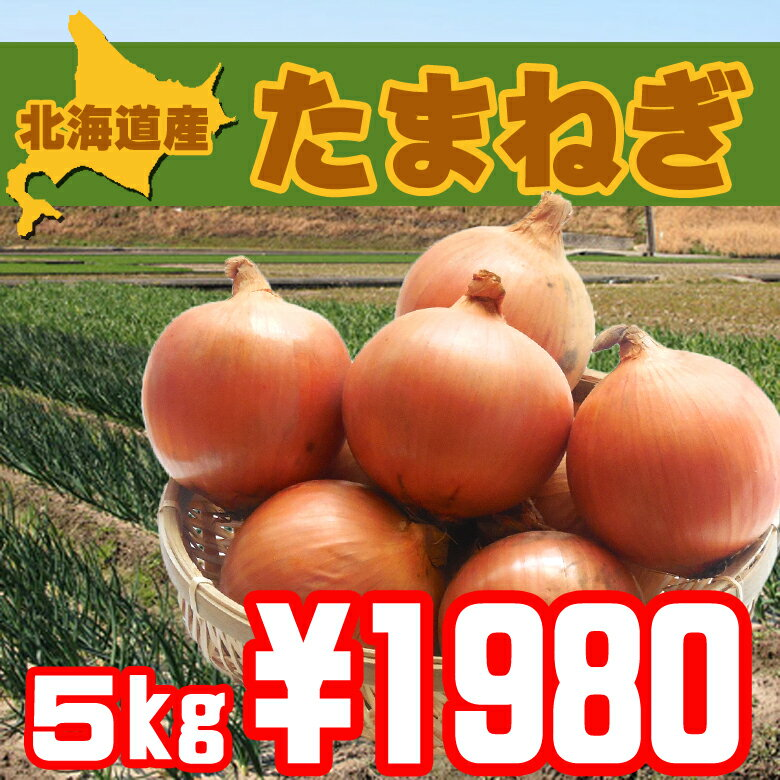 【送料無料】北海道北見産美味し-い玉ねぎ5kg【おすすめ】