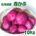 【送料無料】函館産赤かぶ10kg【希少】