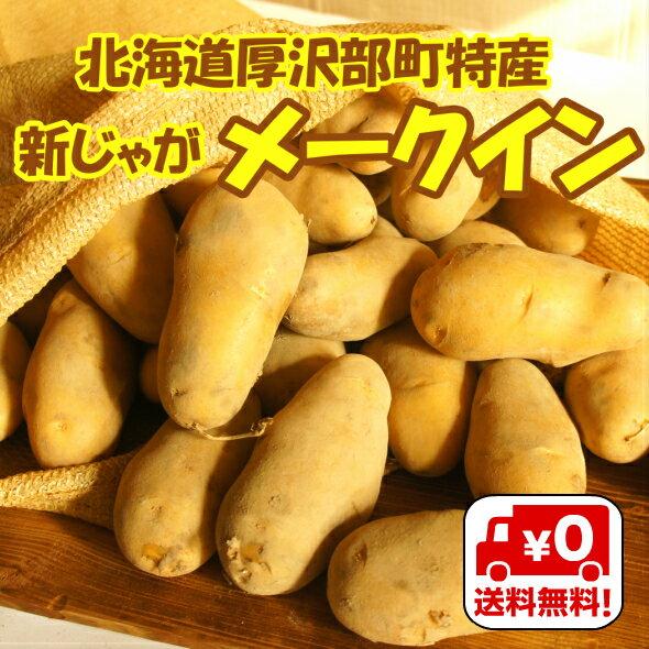 【送料無料】北海道厚沢部町産「新じゃがメークイン」Lサイズ 3kg【お試しサイズ】