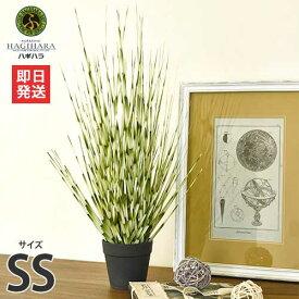 ハギハラ 人工観葉植物 ゼブラグラス #1794 (SS/53cm) [人工植物 造花 観葉植物]