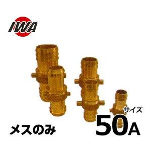 岩崎製作所 ネジ式ホース継手 ポリパイカップリング メスのみ 50mm 黄銅製 41PA050B [ホースカップリング]