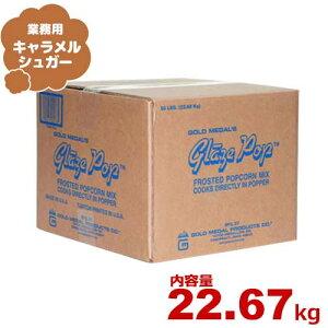 ハニー 業務用ポップコーン調味料 キャラメルシュガー 22.67kg [フレーバー 味付け]