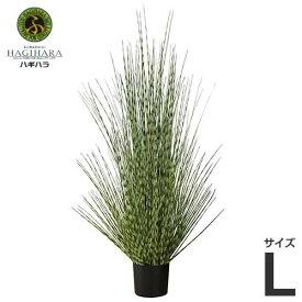 ハギハラ 人工観葉植物 ゼブラグラス #1790 (L/140cm) [人工植物 造花 観葉植物]
