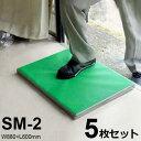 ナンエイ 除菌・消毒マット SM-2 《5枚セット》 (W880×L600mm) [r21][s9-910]