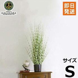 ハギハラ 人工観葉植物 ゼブラグラス #1792 (S/80cm) [人工植物 造花 観葉植物]
