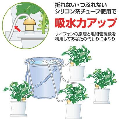 マルハチ自動給水器『水やり当番Mサイズ』(2個入)[r10][s10]