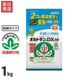 住友化学園芸 園芸用 殺虫剤 オルトランDX粒剤 1kg [花 野菜 害虫 防除]